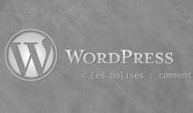 Ignorer le code dans les commentaires wordpress